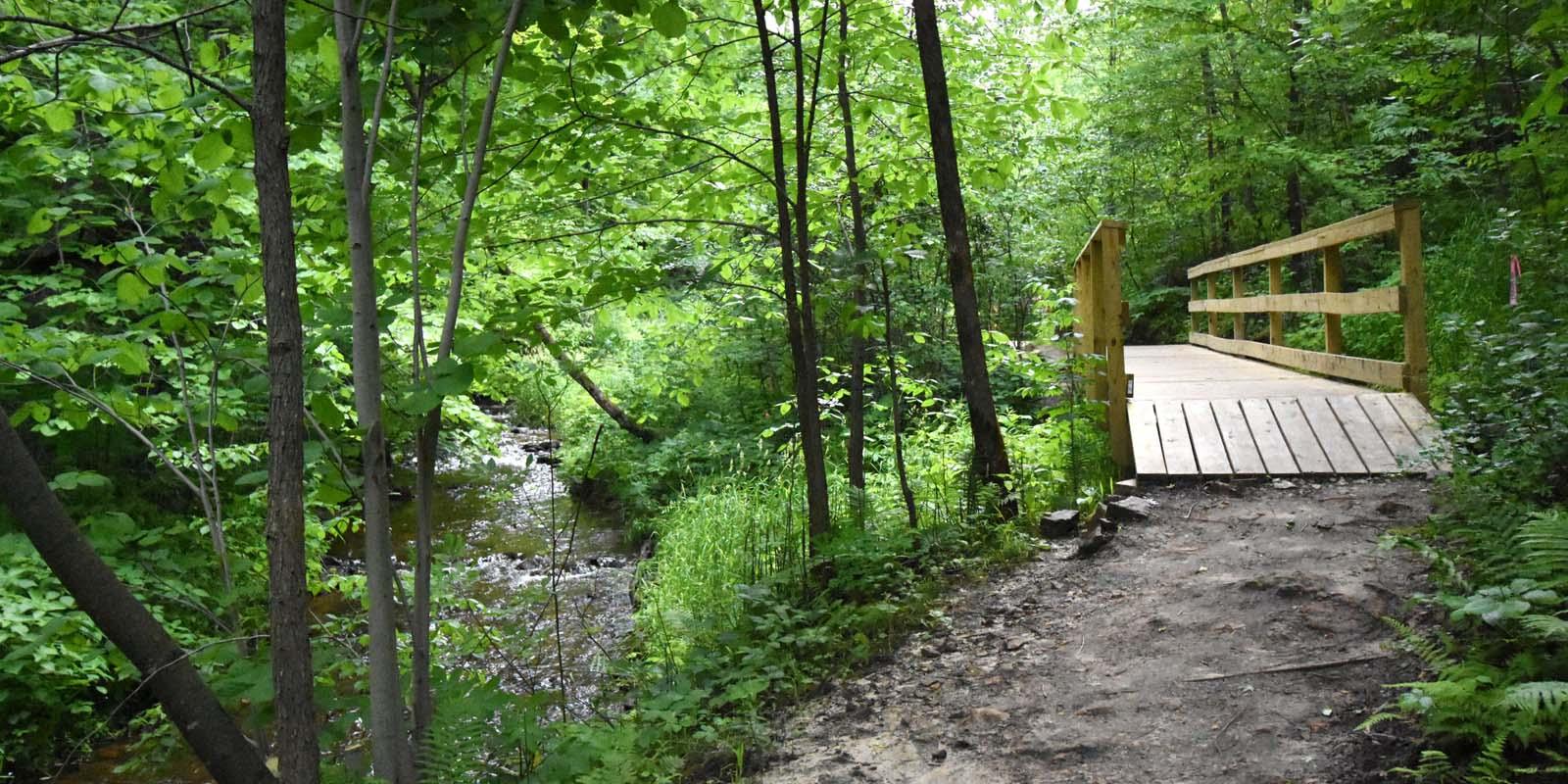 Cascade trail 2